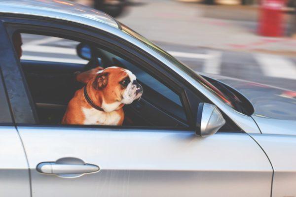 vad innebär leasing av bil