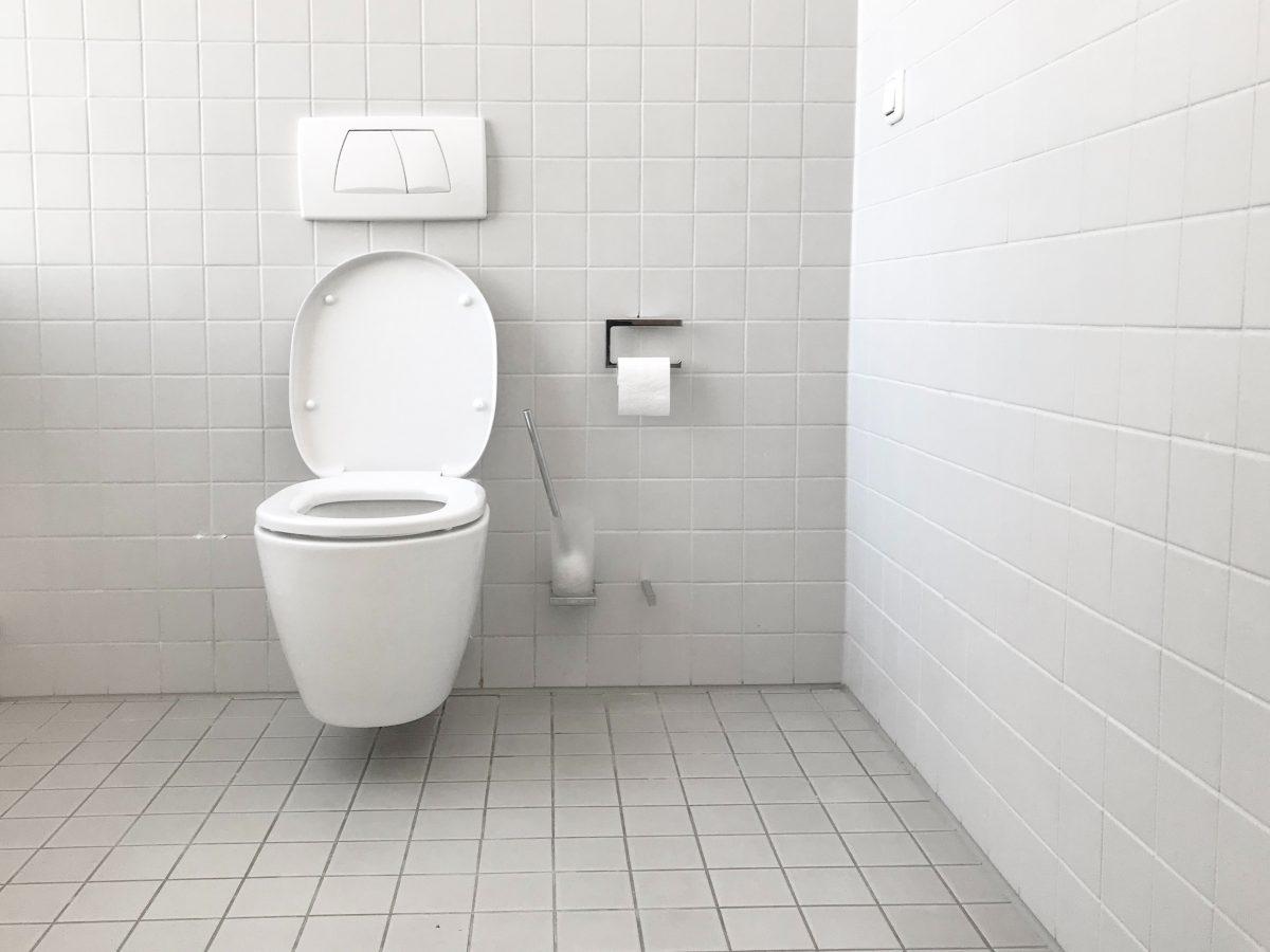 renovera-badrum-toalett-5